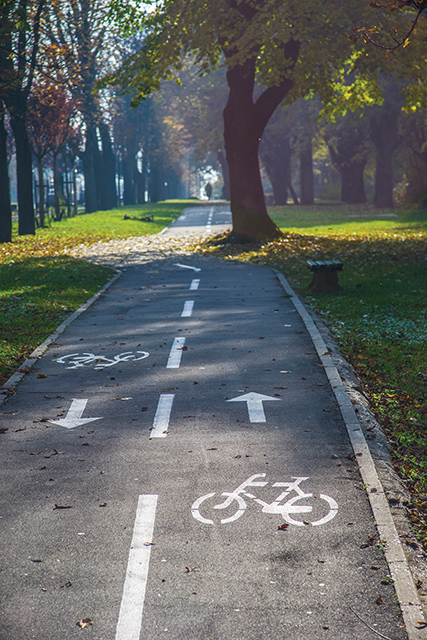 Bicycle lane along the road