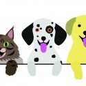 Dog or Cat? Which is a better fit for you or your family?