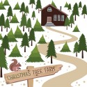 Think real, fresh and local when buying your Christmas tree.